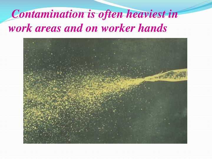 Contamination is often heaviest in work areas and on worker hands