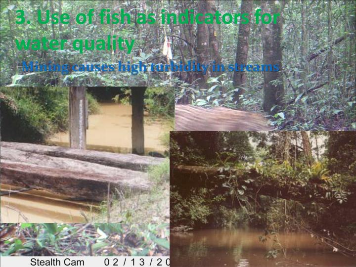 3. Use of fish as indicators for water quality