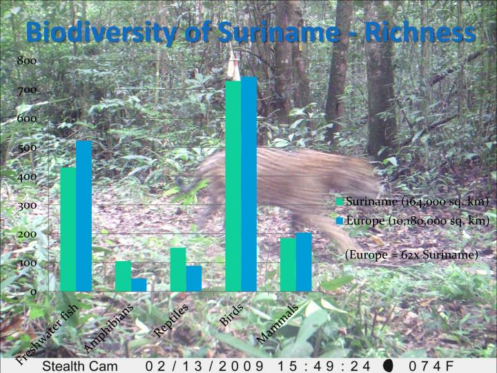 Biodiversity of Suriname - Richness