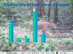 biodiversity of suriname richness