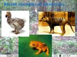 recent examples of extinctions