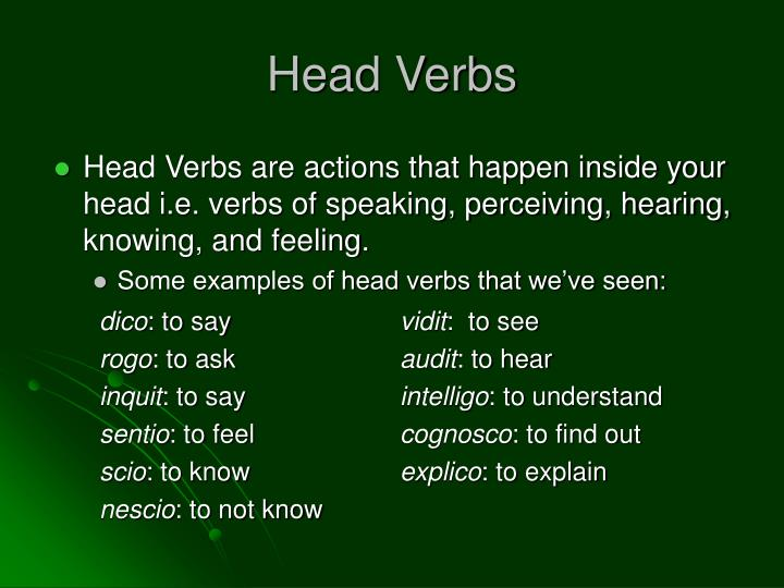 Head Verbs