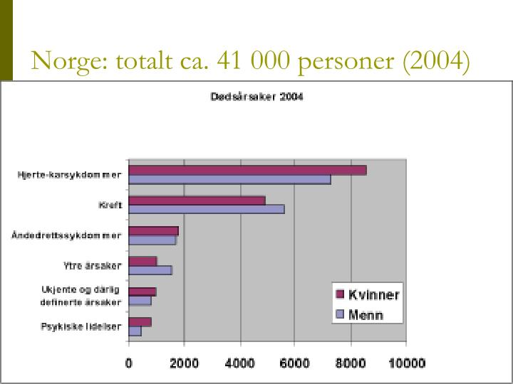 Norge: totalt ca. 41 000 personer (2004)