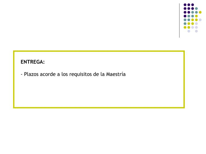ENTREGA: