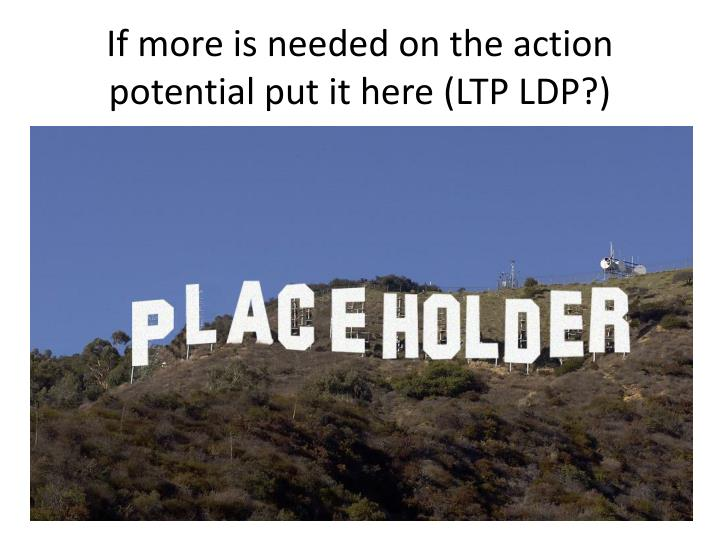 If more is needed on the action potential put it here (LTP LDP?)