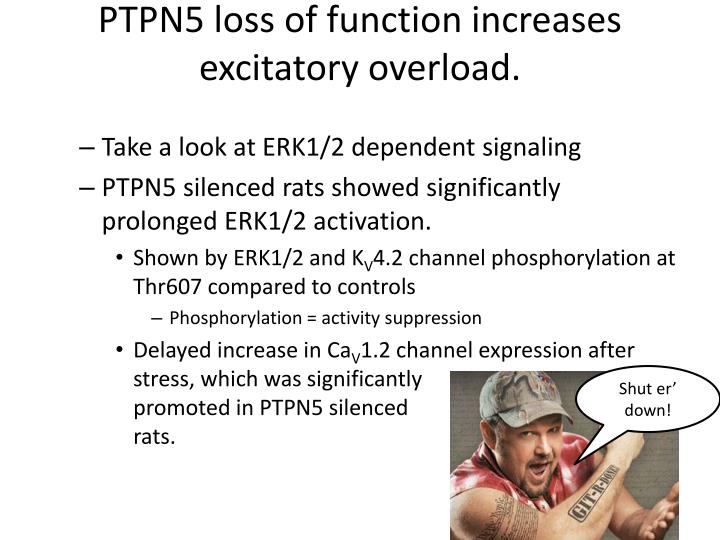 PTPN5 loss of function increases excitatory overload.