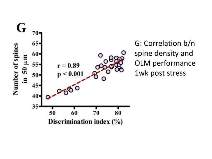 G: Correlation b/n spine density and OLM performance 1wk post stress