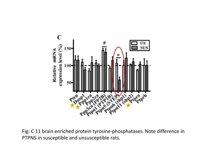 Fig: C 11 brain enriched protein tyrosine-phosphatases. Note difference in PTPN5 in susceptible and unsusceptible rats.