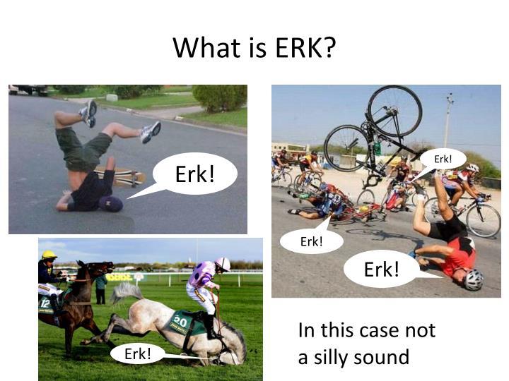 What is ERK?