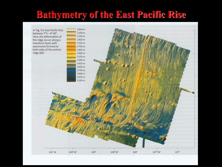 Bathymetry of the East Pacific Rise