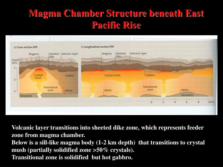 Magma Chamber Structure beneath East Pacific Rise