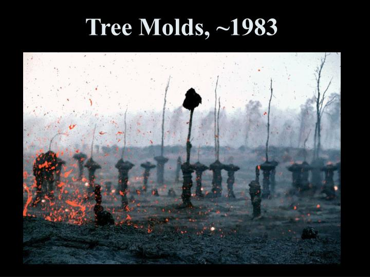 Tree Molds, ~1983