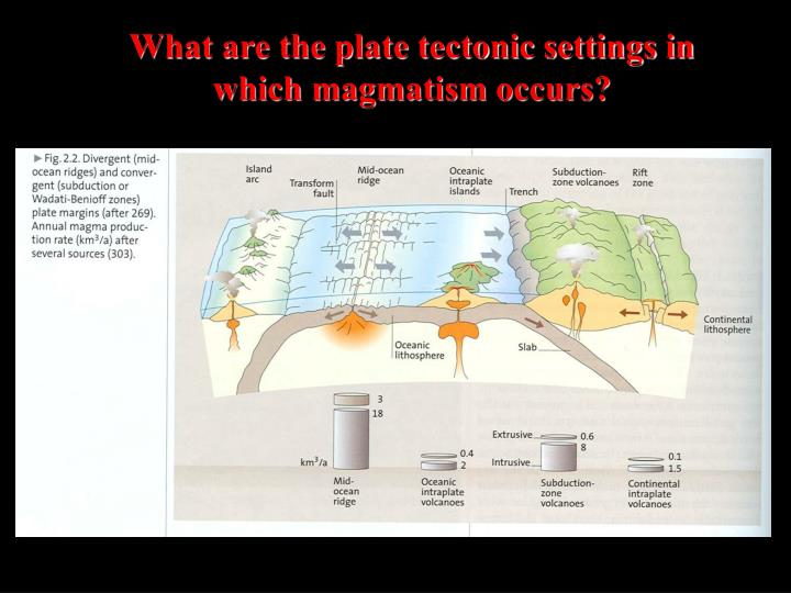 What are the plate tectonic settings in which magmatism occurs?