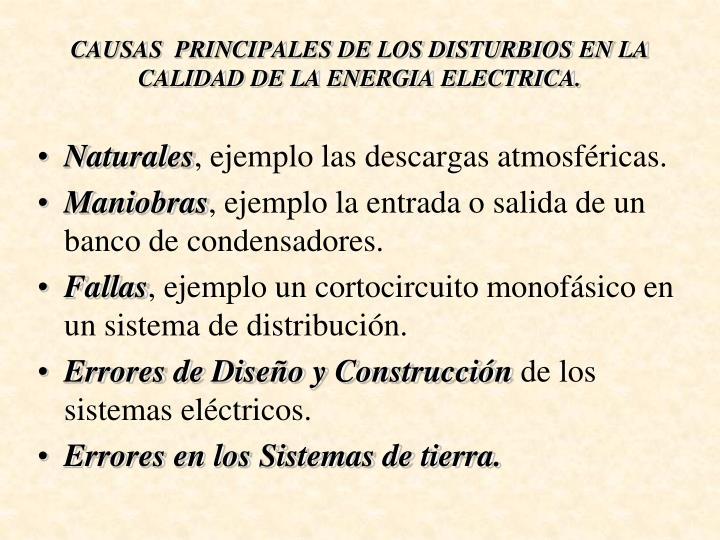 CAUSAS  PRINCIPALES DE LOS DISTURBIOS EN LA CALIDAD DE LA ENERGIA ELECTRICA.