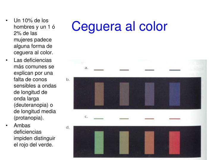 Ceguera al color