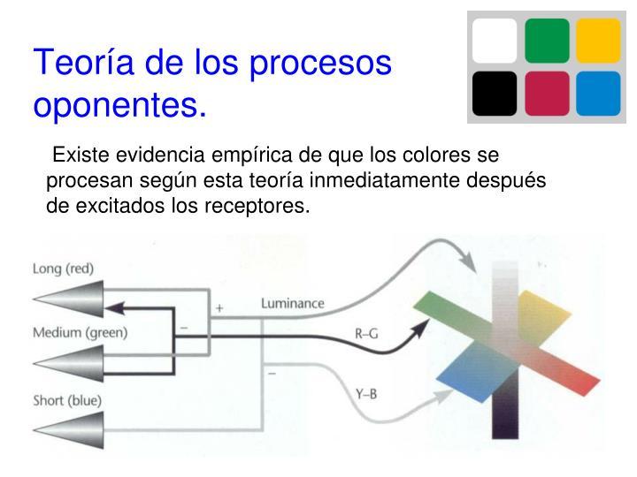 Teoría de los procesos oponentes.