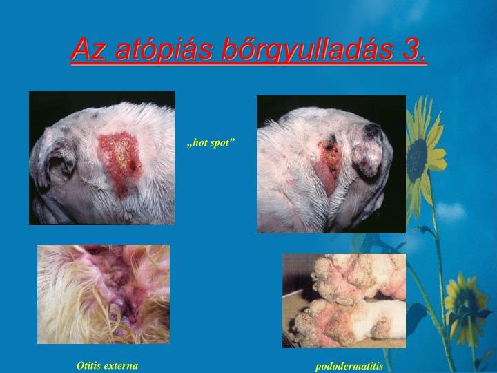 Az atópiás bőrgyulladás 3.