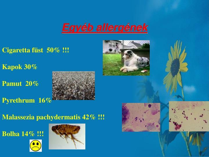 Egyéb allergének