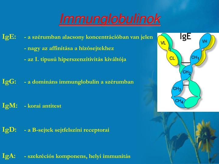 Immunglobulinok