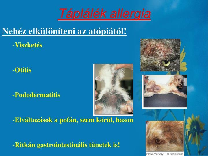 Táplálék allergia