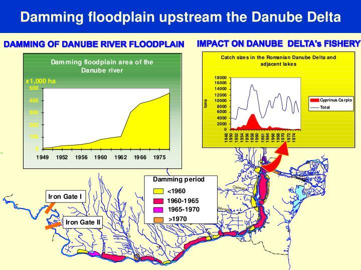 Damming floodplain upstream the Danube Delta