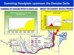 damming floodplain upstream the danube delta