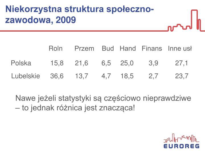 Niekorzystna struktura społeczno-zawodowa, 2009