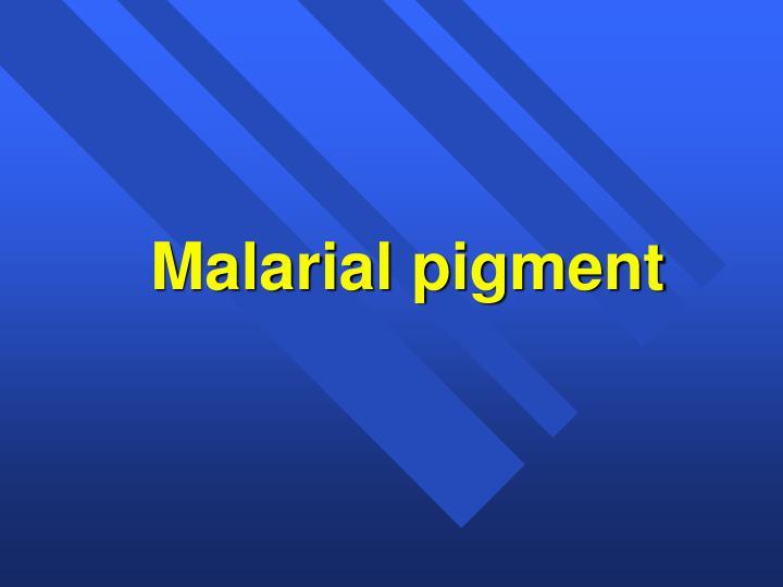 Malarial pigment