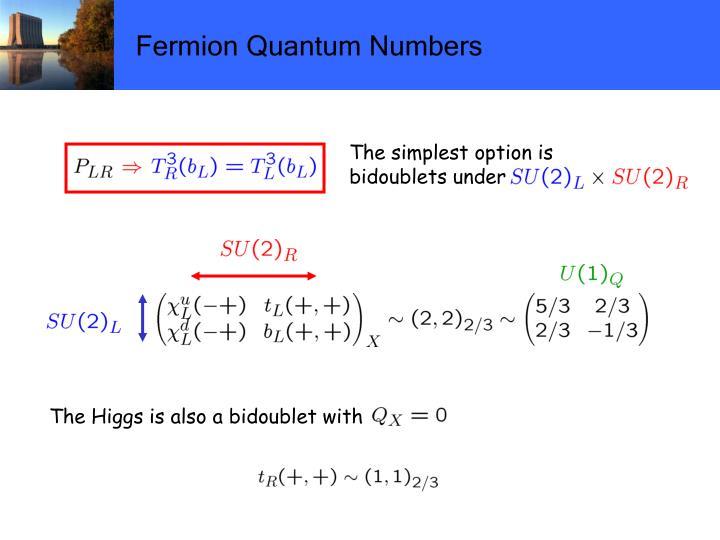 Fermion Quantum Numbers