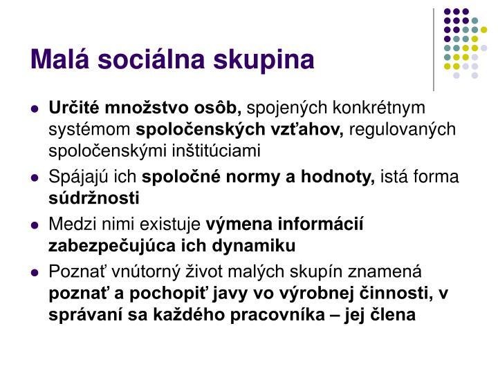 Malá sociálna skupina