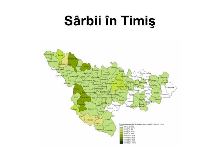 Sârbii în Timiş