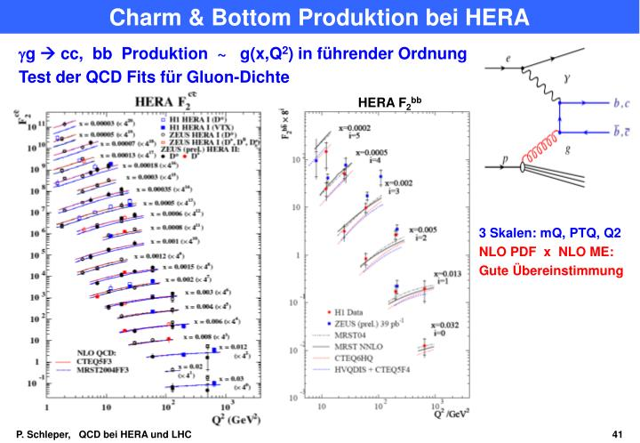 Charm & Bottom Produktion bei HERA