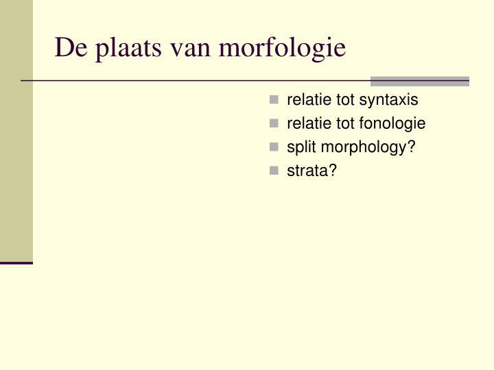 relatie tot syntaxis