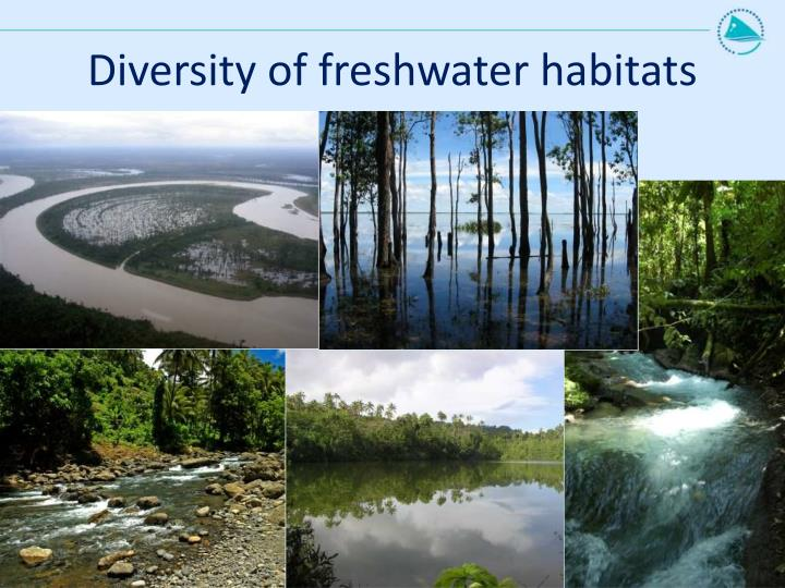 Diversity of freshwater habitats