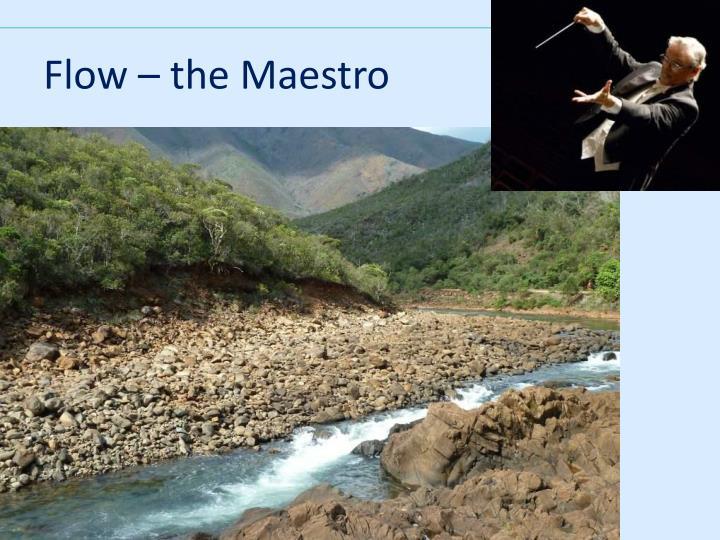Flow – the Maestro