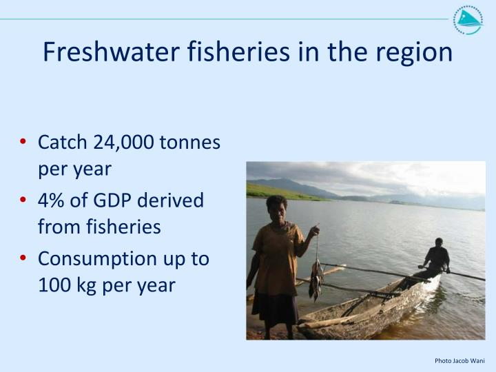 Freshwater fisheries in the region