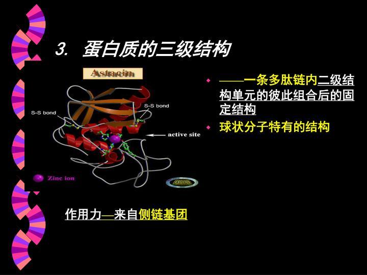 3. 蛋白质的三级结构