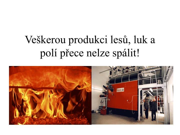 Veškerou produkci lesů, luk a polí přece nelze spálit!