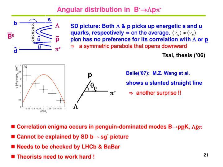 Angular distribution in  B