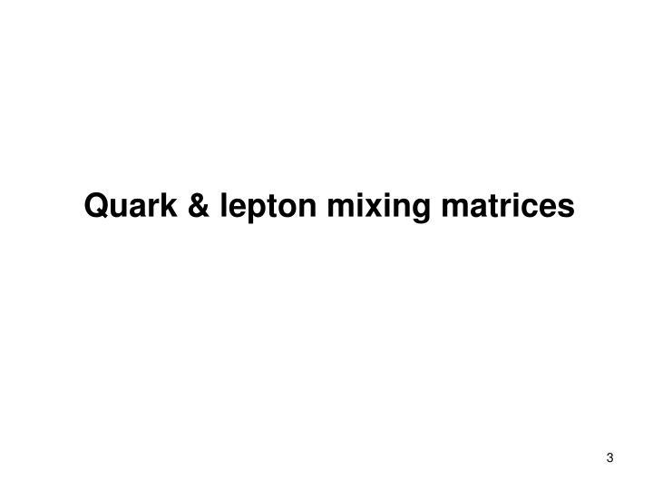 Quark & lepton mixing matrices