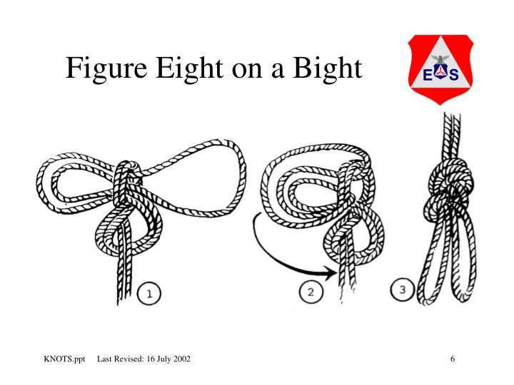 Figure Eight on a Bight