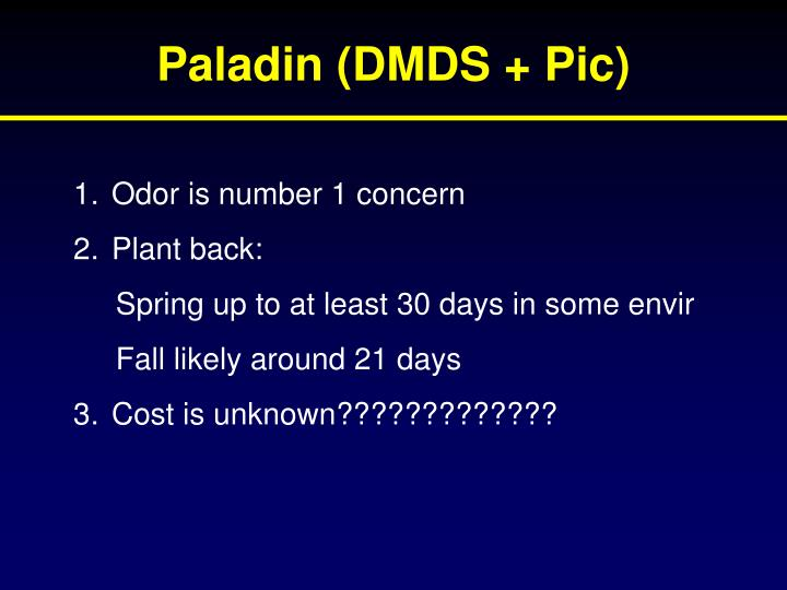 Paladin (DMDS + Pic)