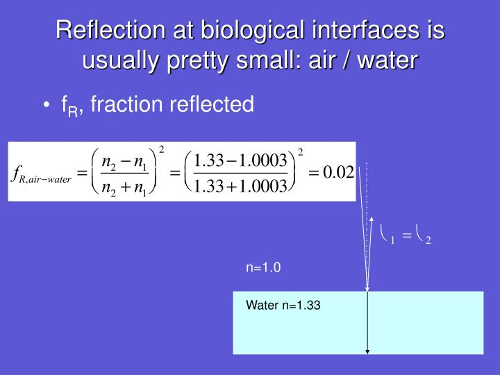 Reflection at biological interfaces is usually pretty small: air / water