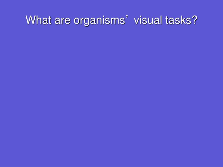 What are organisms visual tasks