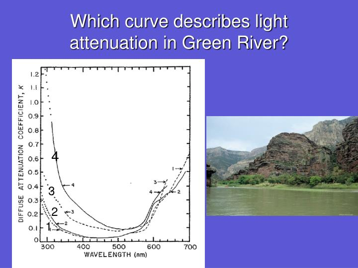 Which curve describes light attenuation in Green River?