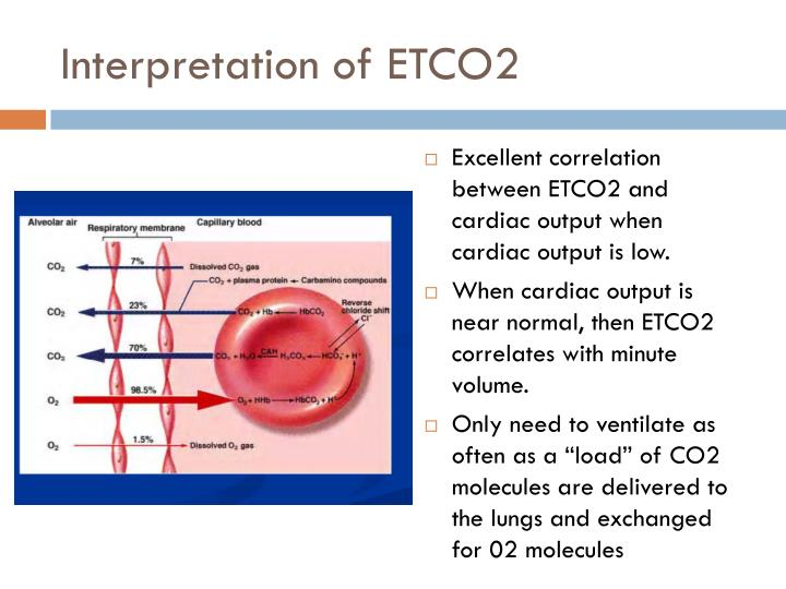 Interpretation of ETCO2