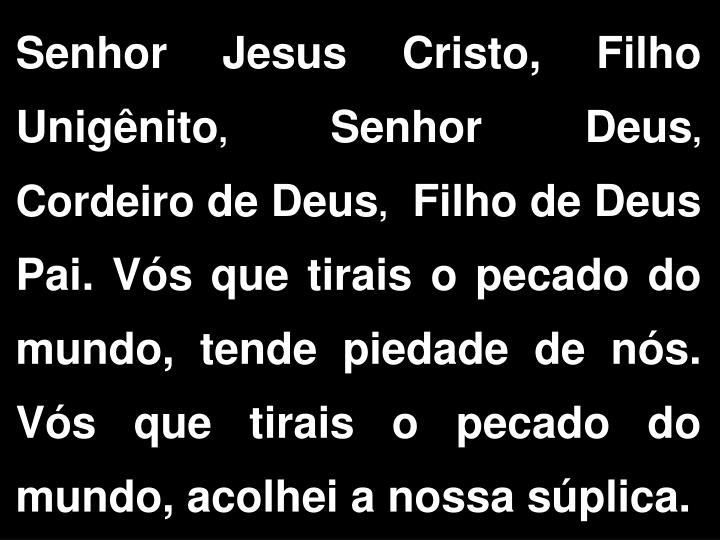 Senhor Jesus Cristo, Filho Unigênito