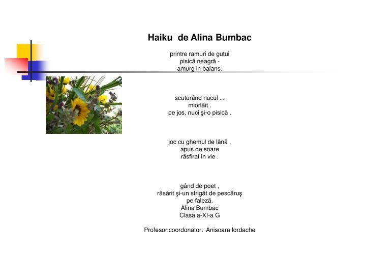 Haiku  de Alina Bumbac