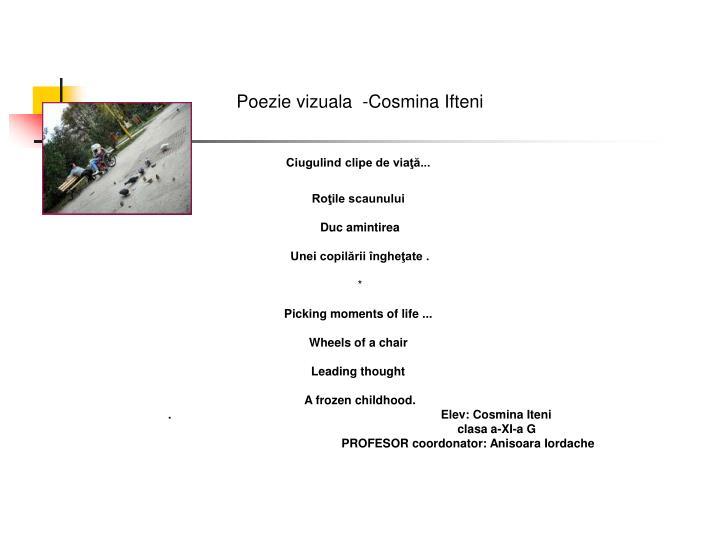 Poezie vizuala  -Cosmina Ifteni
