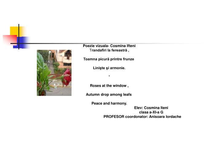 Poezie vizuala- Cosmina Ifteni